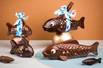 poisson d'avril en chocolat sardines carpes poisson rond chocolat au lait noir blanc laurent le daniel maison le daniel pâtisserie le daniel mof meilleur ouvrier de france rennes bretagne chocolatier chocolaterie chocolat
